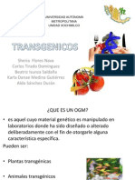 Transgenicos Expo