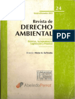 PINTO RDA24 La Administración Ambiental