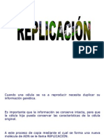 Replicación (1)
