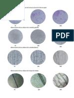 Micrografia