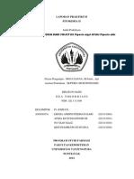 Cover fitokimia.docx