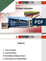 EXPOSICION  PETITORIO MINERO.ppt