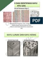 Anatomi Dan Identifikasi Kayu - Pertemuan 6 (Sel-sel Penyusun Kayu 1)