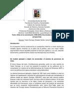 Primer Informe de Lectura Chile Reciente Final