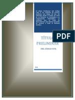 TITULO PRELIMINAR.docx