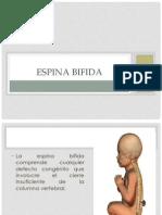 Espina Bifida1.