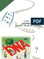 AULA 1 - DNA