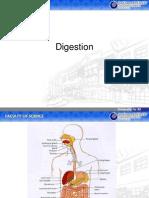 85325383 Sistem Pencernaan Digestion System