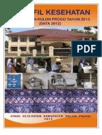 Profil Kesehatan Tahun 2013 Data 2012