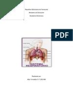 Trabajo Sistema Respiratorio Mima