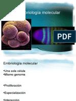 Embriología Molecular 1 y 2