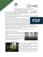 8 Buenas Ideas Para Hacer Fotos en Un Bosque 1637