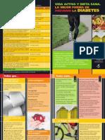 PDF(68) - Folleto_diabetes