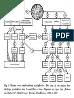Tree Distillation