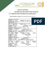 Analisis y Descripcion de Puestos de Trabajo en PRL