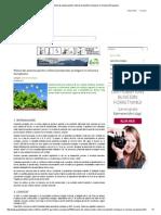 Planul de Actiune Pentru Viitorul Productiei Ecologice in Uniunea Europeana