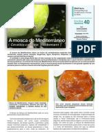 Ficha Tecnica 40 2011