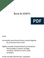 Bone & Joint