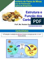 5. Estrutura e Função Dos Carboidratos - Rosiane Gomes