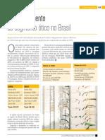 Desenvolvimento Do Segmento Ótico No Brasil