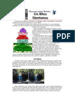 Praticas_Tibetanas.pdf