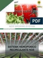 Sistena Hidroponico Recirculante NGS . Ciclo 2013-2014