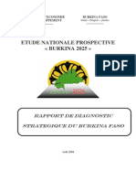 Rapport Diagnostic Strategique