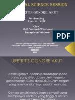 PP UGA
