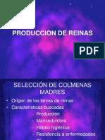 Clase 8 AP 2008 Produccion de Reinas y Jaela Real