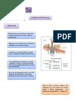 Caracteristicas de Elementos Estructurales