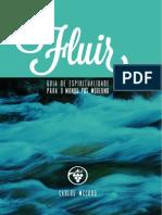 FLUIR McCORD.pdf