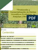 7117404 Produccion y Comercializacion de Hierbas Aromaticas Ecologicas Dieter Clower