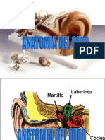 Presentacion de Oido- Anatomia