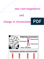 Chromosome Rearrangements
