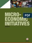 Micro-economic initiatives