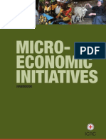 Micro-economic initiatives