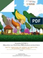 rapport_exppert_3.pdf