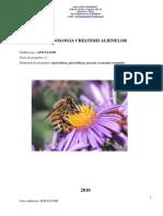 Curs de Cacurs calificare apicultor