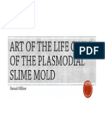 Art of the Life Cycle of the Plasmodial ART Of