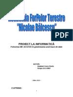 Documentatie Proiect MS Access