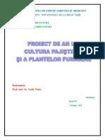 Pascani-Cultura Pajistilor Si a Plantelor Furajere
