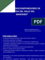 """""""Hongos Descomponedores de Madera Del Valle Del Mantaro"""""""