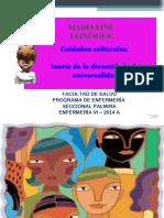 1. Enfermeria en Base a La Cultura Madeleine Leiniger 2014a