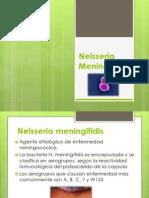 Expo Neisseria Meningitidis