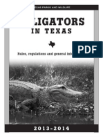 ALLIGATORS IN TEXAS