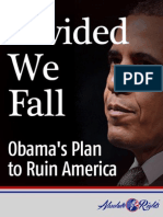 Divided We Fall- Obama's Plans to Ruin America