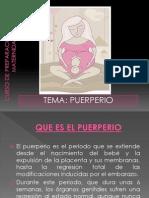 Curso de Preparacion Para La Maternidad-puerperio
