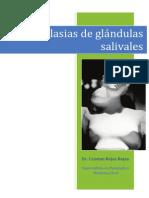 Neoplasia s Gland Ulas Saliva Les
