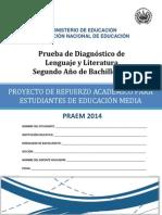 Prueba de Diagnstico de Lenguaje y Literatura Segundo Ao de Bachillerato - 2014