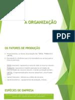 2 A ORGANIZAÇÃO.pdf